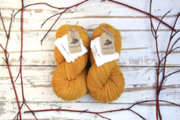 German Merino Onion - Sun Yellow