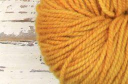 German Merino Onion - Sun Yellow zoom