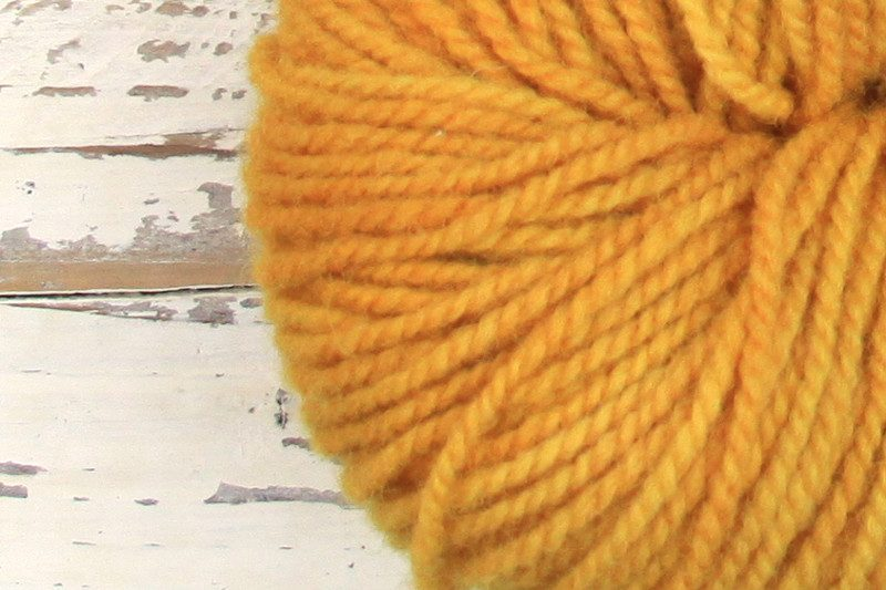German Merino Onion - Sun Yellow zoom