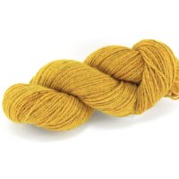 German Merino onion gold