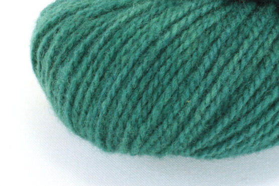 GERMAN MERINO - Forest zoom