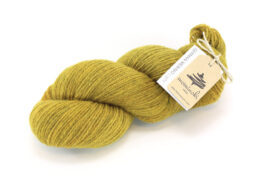 GERMAN MERINO - Dijon
