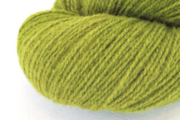 GERMAN MERINO - Moss zoom
